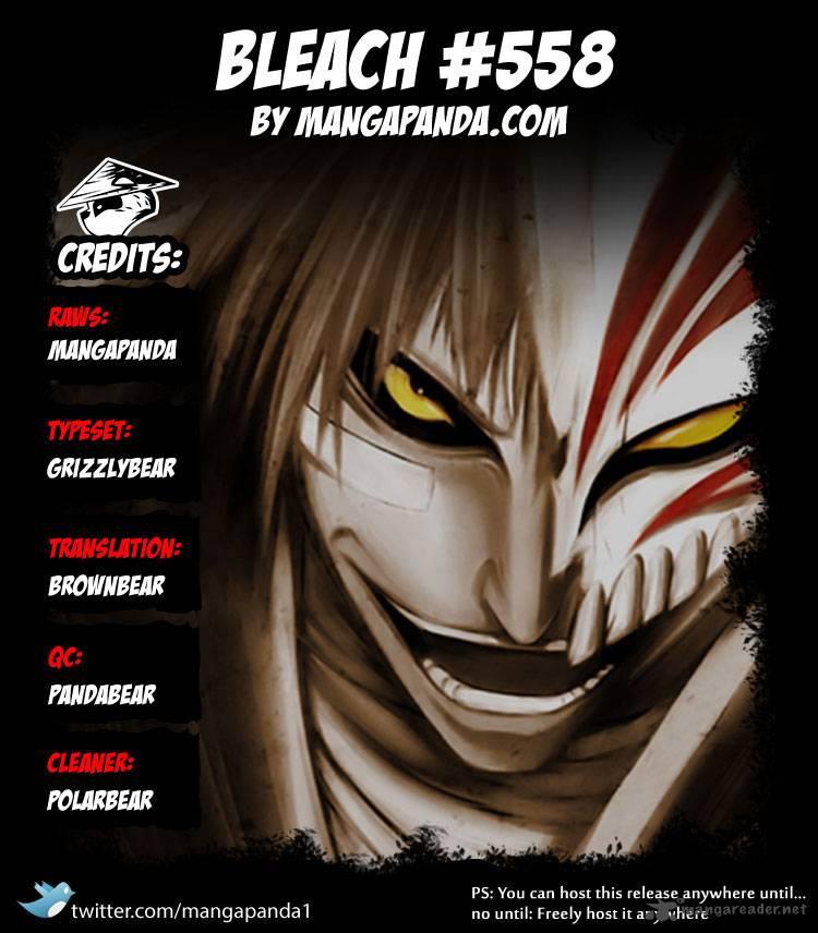 Bleach 558: The Wolf's Heart